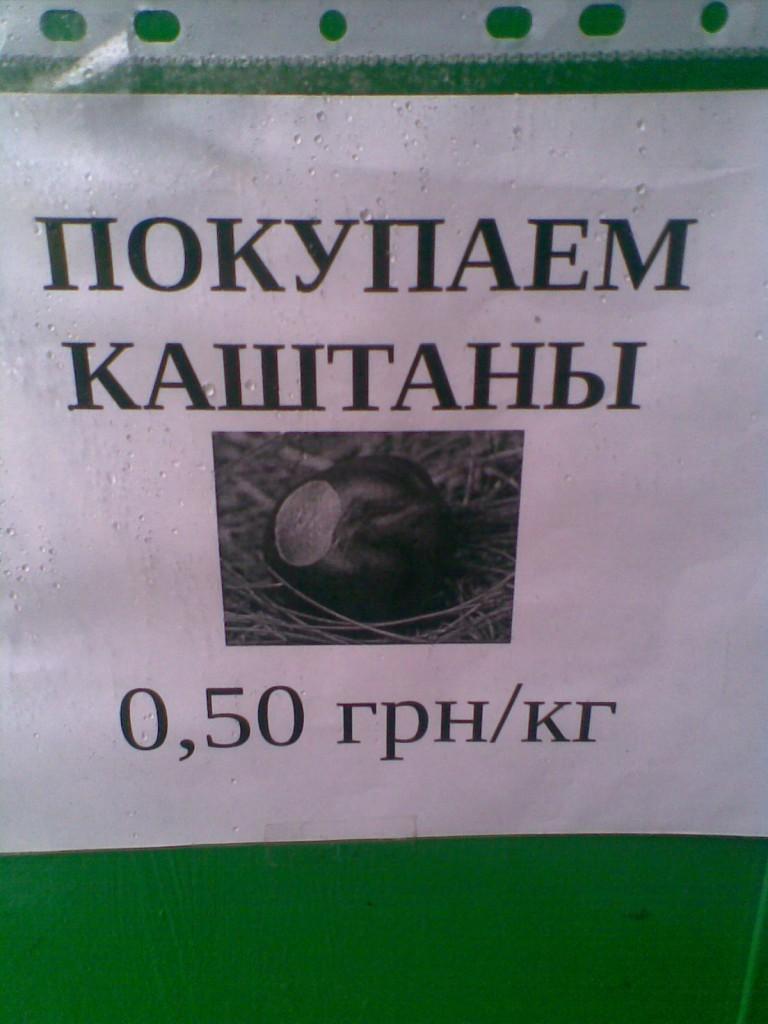 Пункти Київміськвторресурсів приймають
